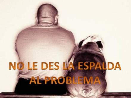 NO LE DES LA ESPALDA AL PROBLEMA